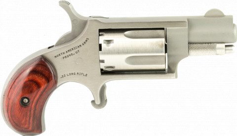 North American Arms 22LR facing right